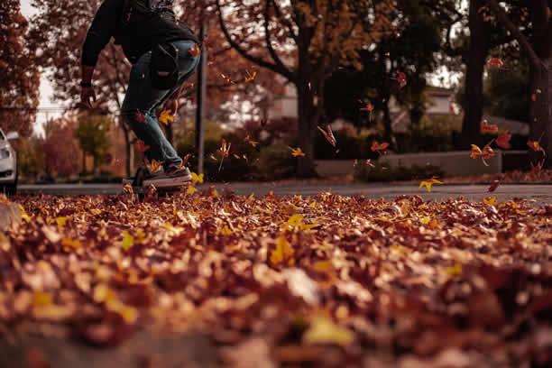 Jesienne aktywności – co robić jesienią?